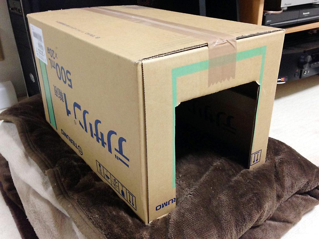 箱で作った寝床