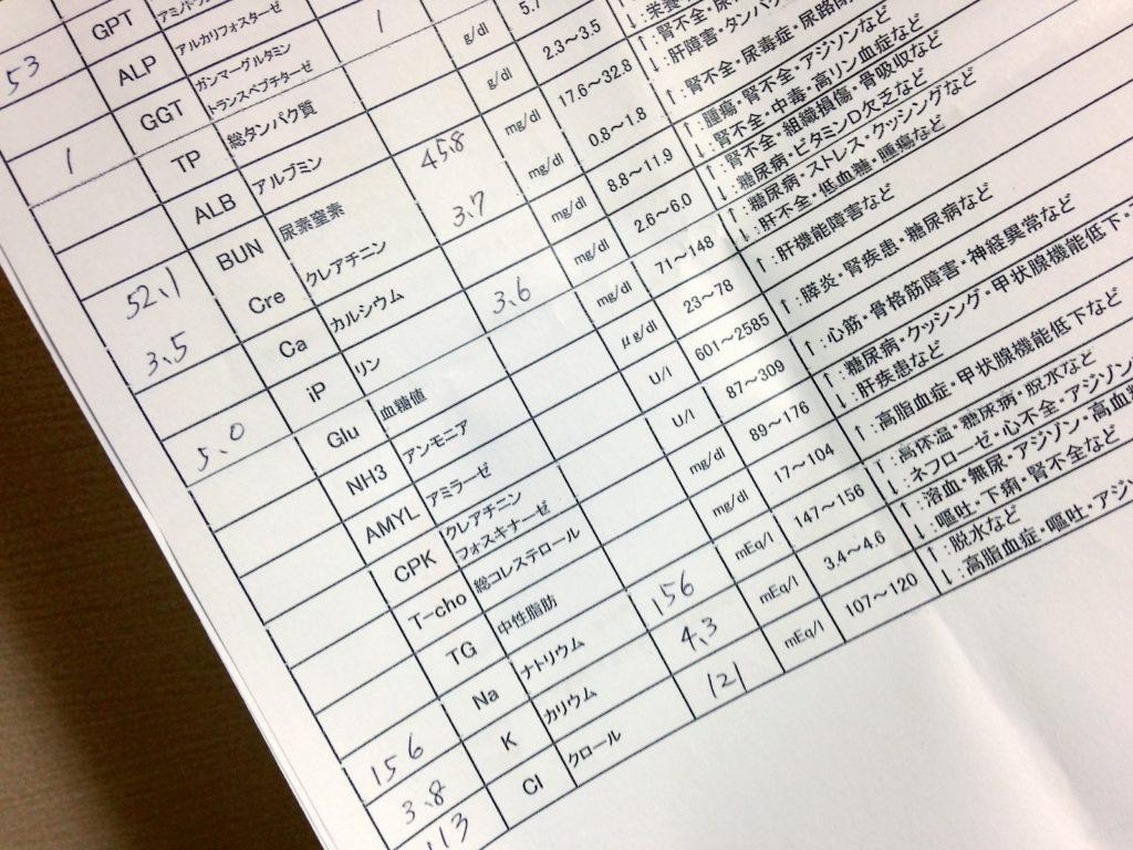 血液検査の結果 16回目