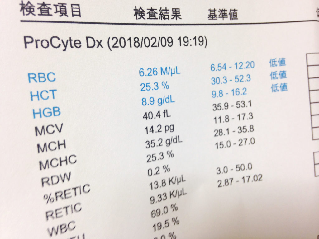 血液検査の結果 17回目2