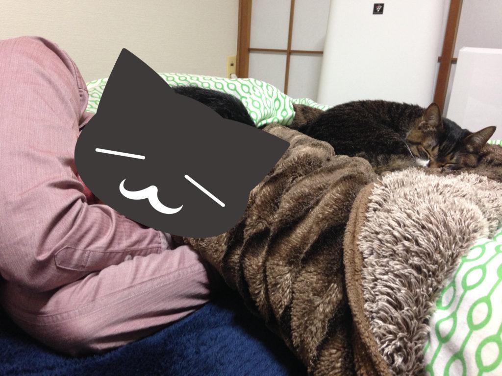 布団で寝る愛猫と夫
