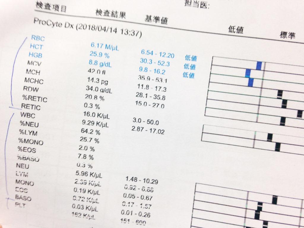 血液検査の結果 21回目2