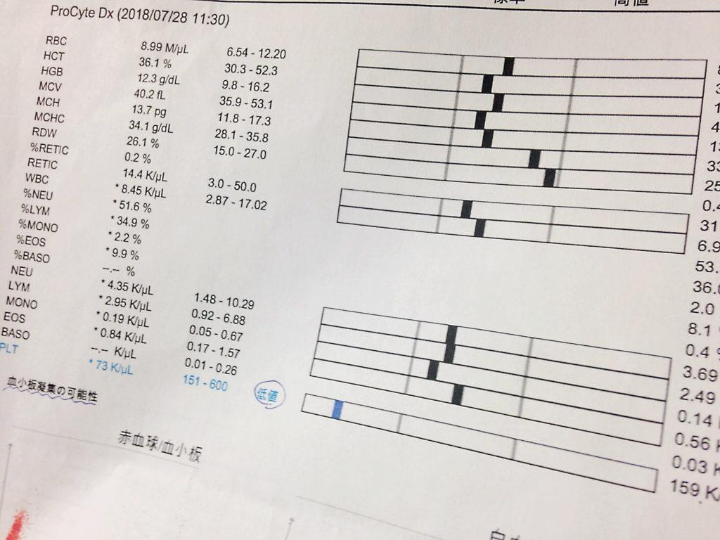 血液検査の結果 24回目2